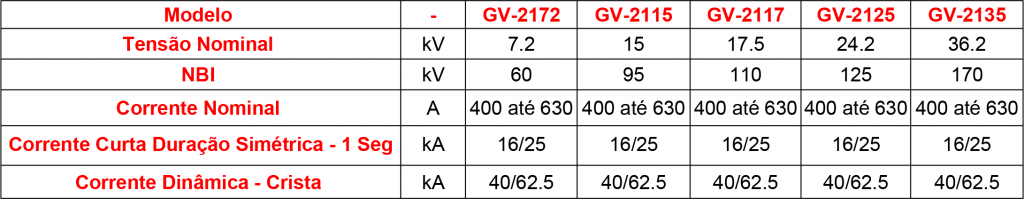 CARACTERISTICAS-GV-21 (1)